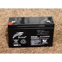RT6120 6 Volt 12AH Batery